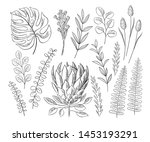 vector set of floral elements.... | Shutterstock .eps vector #1453193291