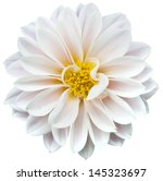 Stock photo white flower 145323697