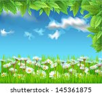 field of daisies | Shutterstock .eps vector #145361875