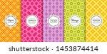 elegant vector geometric...   Shutterstock .eps vector #1453874414