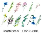 hand drawn watercolor... | Shutterstock . vector #1454310101