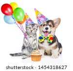 Stock photo funny puppy and kitten in party hats holds balloons with little birthday cupcake isolated on white 1454318627