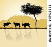 african landscape flora and... | Shutterstock .eps vector #145439581