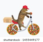 The Cat In A Red Cap Is Riding...