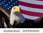 Bald Eagle And American Flag...
