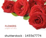 Stock photo red roses bunch isolated on white background with sample text 145567774