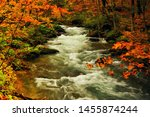 Oirase Stream In Autumn. ...