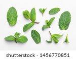 fresh green mint leaves on...   Shutterstock . vector #1456770851
