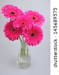 Pink Gerbera Flowers In Vase