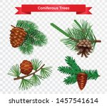 set with pine tree cone... | Shutterstock .eps vector #1457541614