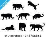 Set Of Tiger Silhouettes. Vector