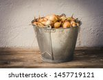 metal vintage bucket filled...