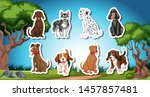 pack of dog sticks with nature... | Shutterstock .eps vector #1457857481