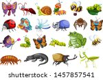 set of insects including...   Shutterstock .eps vector #1457857541