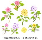 decorative flowers collection | Shutterstock .eps vector #145804511