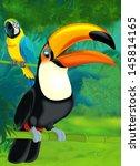 cartoon jungle   illustration... | Shutterstock . vector #145814165