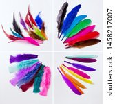 colourful feathers in the studio | Shutterstock . vector #1458217007