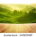 Stock photo wood platform beside tea plantation in morning view cameron highland malaysia 145829489