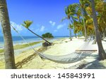 Hammock Between Two Palms On A ...