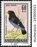 Small photo of VIETNAM - CIRCA 1978: A stamp printed in Vietnam shows Acridotheres cristatellus or crested myna, series devoted to the songbirds, circa 1978