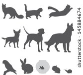 Stock vector pets silhouettes set 145884674