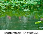 Pink Lotus Is Reflected In The...