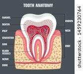 medical vector icon dental... | Shutterstock . vector #1459230764