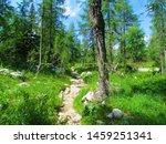 Stone Path Leading Through A...
