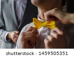 Yellow Tie Butterfly On The...