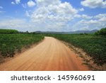 country road | Shutterstock . vector #145960691
