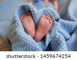 Pregnancy  Motherhood ...