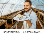 Stock photo portrait of a handsome chef cook standing with cooked snails in the hothouse of a farm for growing 1459835624