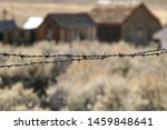 Fence On Abandoned Pasture In...