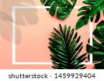 tropical green leaf with shadow ... | Shutterstock . vector #1459929404