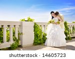 kiss of the newly married... | Shutterstock . vector #14605723