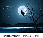 Night Scene Illustration With...