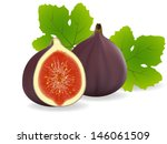 cut,diet,exotic,fig,food,fresh,fruit,half,illustration,isolated,leaf,purple,ripe,seed,slice