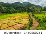 Green Terraces Rice Field  A...