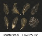 Gold Feathers Vector Collection ...