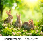 Rabbits. Beauty Art Design Of...
