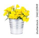 Yellow Flowers In Bucket....