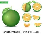 green tangerine sour orange... | Shutterstock .eps vector #1461418601