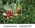 closeup elevated view of fresh... | Shutterstock . vector #146165735