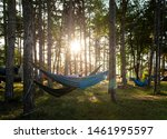 Hammocks On Trees In The Forest....