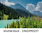 Summer Mountain Landscape With...
