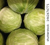 Small photo of Macro Photo food vegetable cabbage. Texture background vegetable white headed cabbage