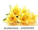 Beautiful Orange Lilies ...