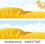 vector autumn backgrounds with... | Shutterstock .eps vector #146317187