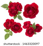collection of red roses... | Shutterstock . vector #1463320097