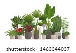 collection of houseplants for... | Shutterstock .eps vector #1463344037